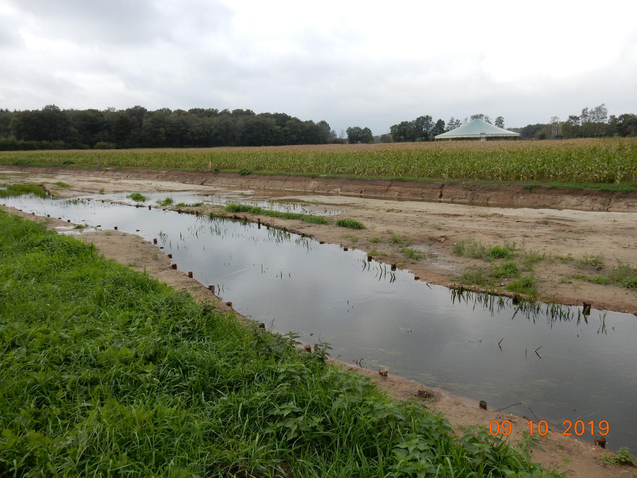 Blick gegen die Fließrichtung bei erhöhten Wasserständen