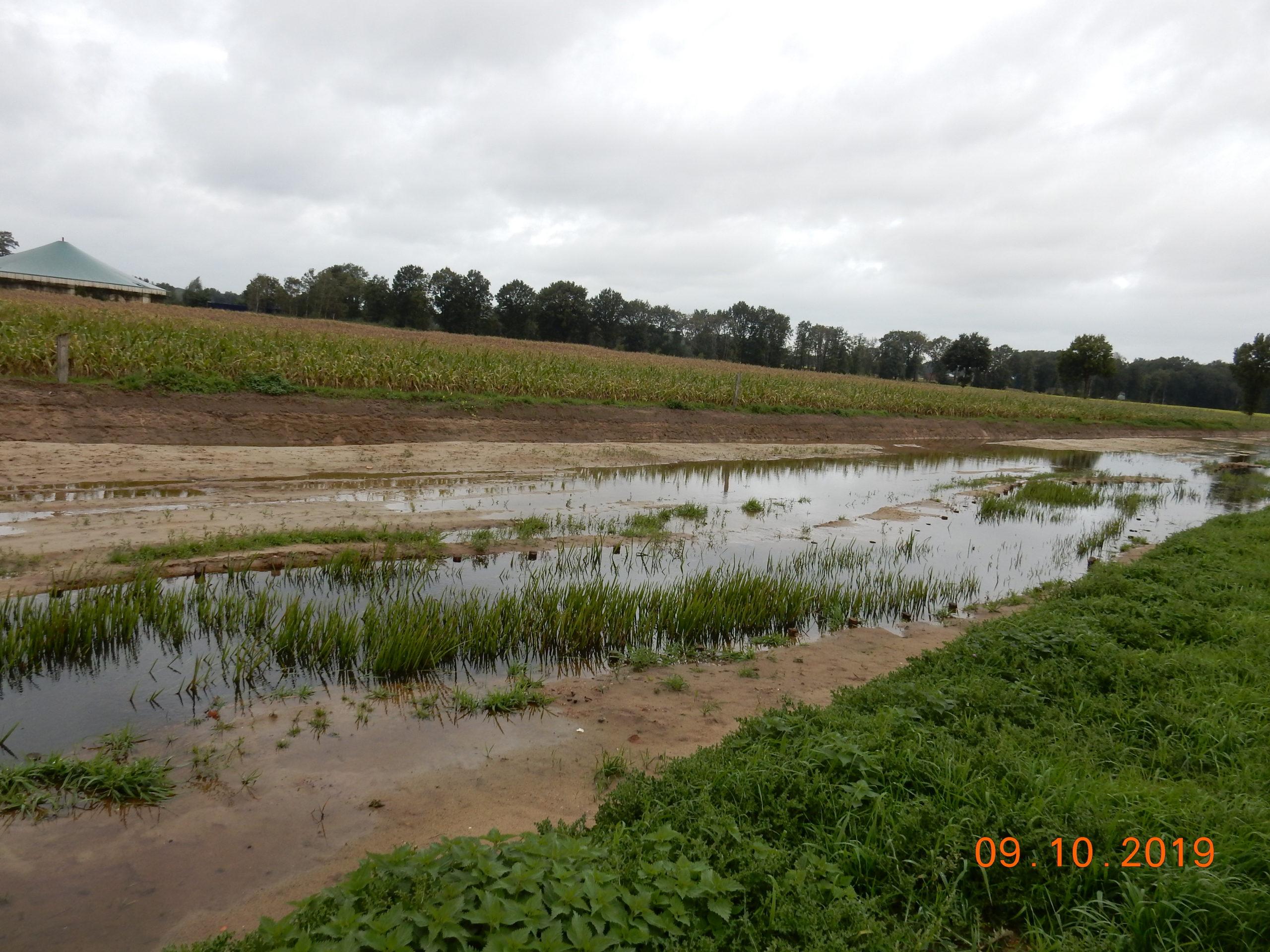 Blick in Fließrichtung bei erhöhten Wasserständen